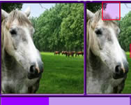 Find the differences horses j�t�k